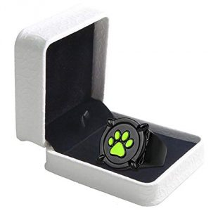 Cat Noir Ring Anime Cosplay Costume Zinc Alloy Accessories DIA 22 mm Adult Fancy Dress Pandent Halloween Christmas Gifts Box Set